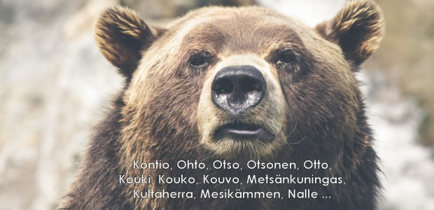 Audio: Nalle, otso, kontio: metsän kuninkaalla on suomen kielessä yli kaksisataa eri ! suomalaisille karhu oli pyhä, ja erilaisia kiertoilmauksia...
